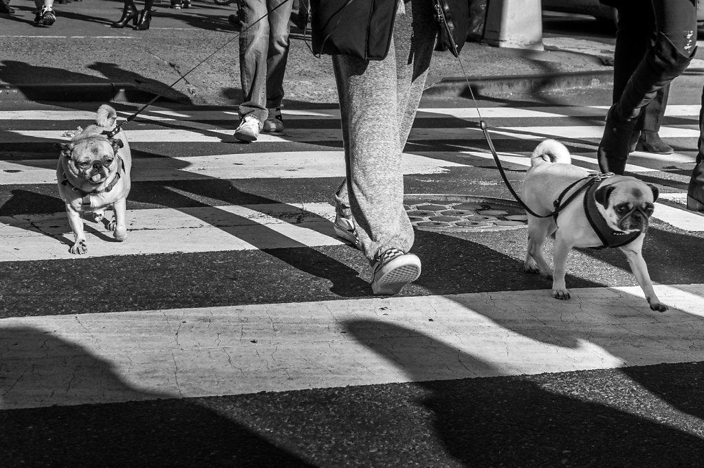 2014-New-York-Street-BW-12.jpg
