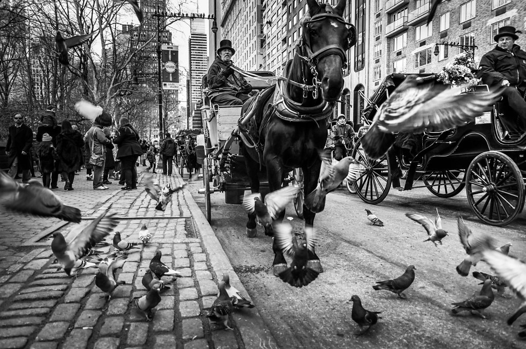 2014-New-York-Street-BW-22.jpg