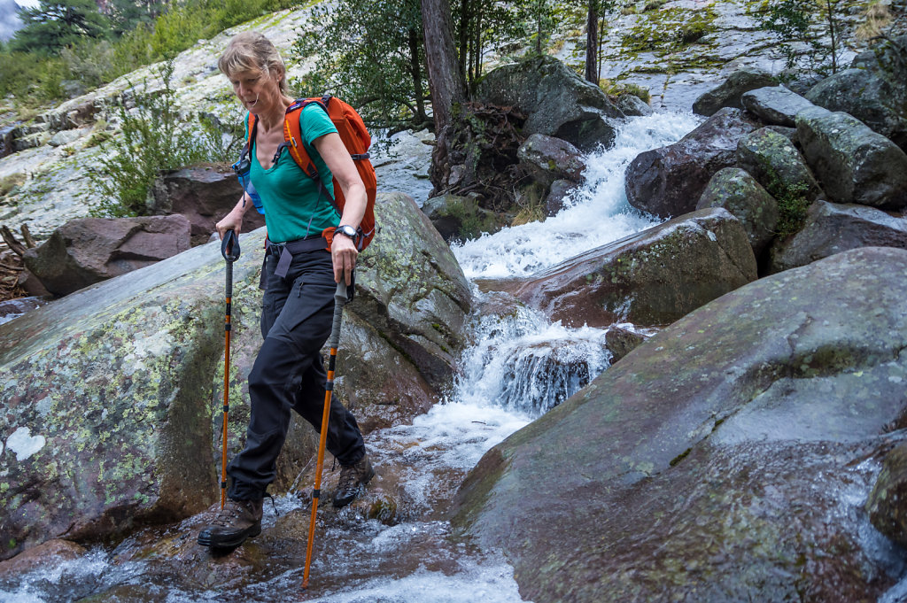 Bonifatu forrest hiking to refuge Carozzu  (1 260 m)