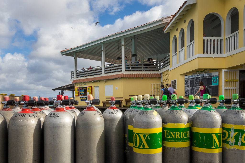 2016-Bonaire-9.jpg