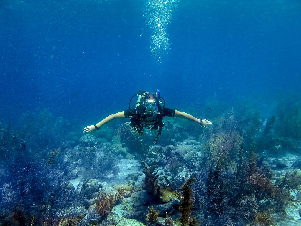 2016 Diving in Bonaire
