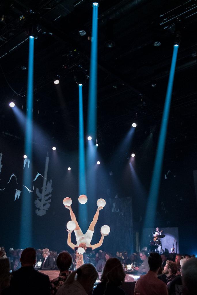 2018-Cirkus-Cirkoer-4.jpg