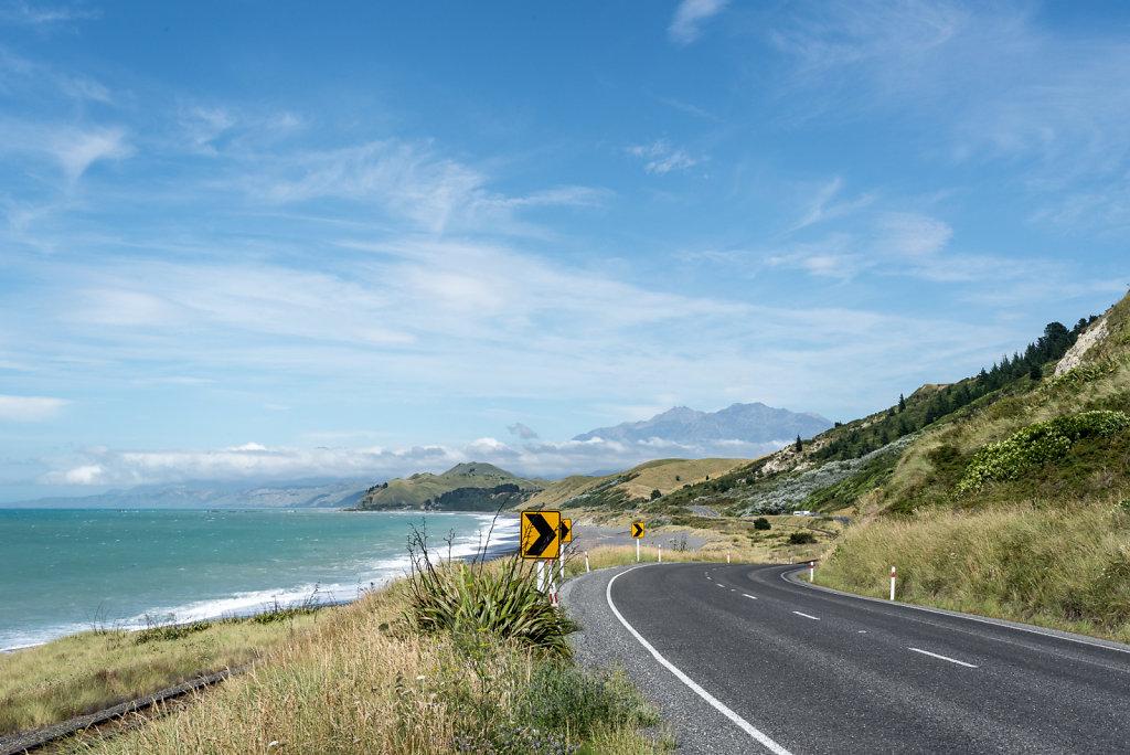 2019-Nya-Zeeland-65.jpg