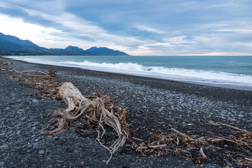2019-Nya-Zeeland-74.jpg